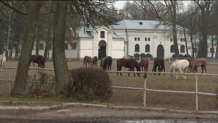 RMF: biegli uznali, że zarządzanie stadniną w Janowie Podlaskim nie budziło zastrzeżeń