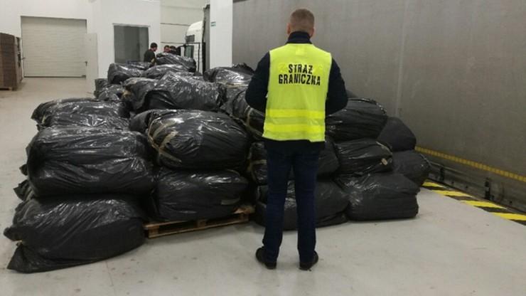 Ciężarowy MAN, a w nim 4,5 tony nielegalnego tytoniu