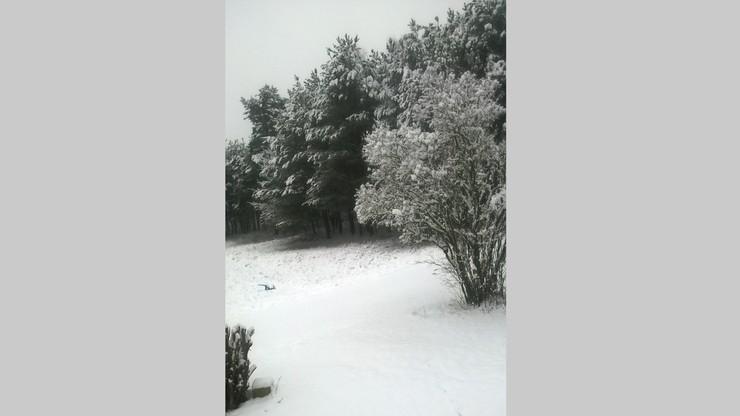 W okolicach Wrocławia napadało śniegu. Zima nie daje o sobie zapomnieć!