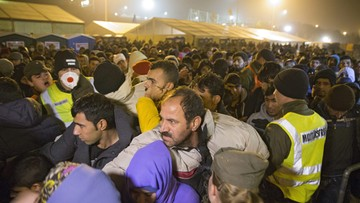 29-10-2015 09:06 Szefowa MSW Austrii: musimy przekształcić Europę w twierdzę