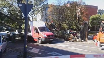 04-10-2016 14:24 Mocno wieje w Łodzi. Topola spadła na dwa samochody