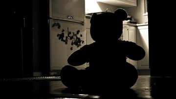 30-08-2016 18:40 Przez lata molestował własne dzieci. Usłyszał wyrok 11,5 roku więzienia
