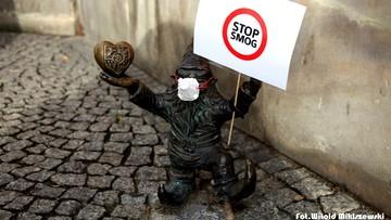 14-11-2017 11:54 Krasnoludki w maskach ochraniających przed smogiem. Akcja we Wrocławiu
