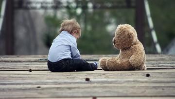 25-04-2017 06:57 RPD pyta MSZ o ochronę praw polskich dzieci za granicą