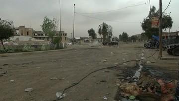 13-04-2017 22:06 Utrzymują się przy życiu dzięki deszczówce i resztkom roślinności. Dramat ludności w Mosulu