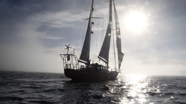 Polski jacht Selma Expeditions z rekordem Guinnessa
