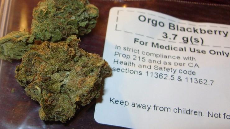 Ustawa dotycząca dostępu do medycznej marihuany - w lutym