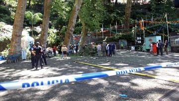15-08-2017 15:19 Drzewo przygniotło ludzi podczas obchodów religijnych w Portugalii. Zginęło 12 osób