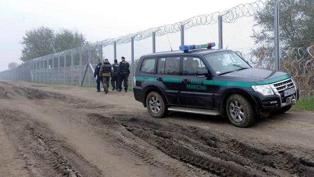 Słowenia rozpoczęła budowę ogrodzenia na granicy z Chorwacją