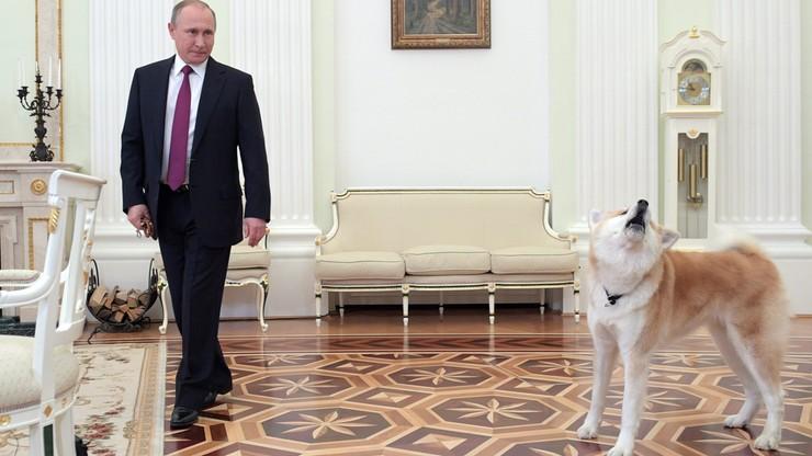 """""""Forbes"""": Putin najbardziej wpływowy. Czwarty raz z rzędu"""
