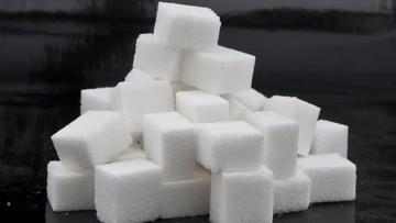 14-09-2016 07:30 Gang z Włocławka wyłudził ponad 36 mln zł na sprzedaży cukru