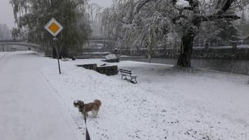 Śnieg na Dolnym Śląsku. Pogodowe anomalie