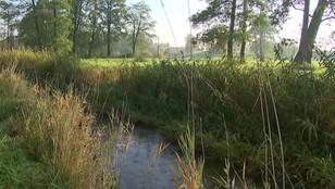 Lubelskie: Ciało noworodka znaleziono w rzece