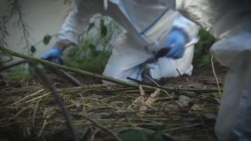 11-09-2016 21:26 Odnaleziono szczątki kobiety zaginionej 7 lat temu