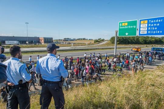 Bild: W Niemczech jest pół miliona niezarejestrowanych imigrantów