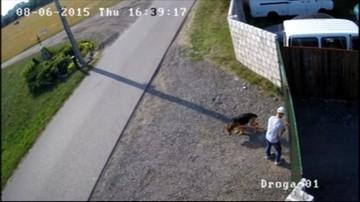 02-04-2016 17:54 Biegacz oskarżony o znęcanie się nad psem stanie przed sądem