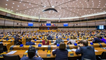 Parlament Europejski za zniesieniem wiz dla Gruzinów