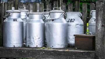 13-10-2016 19:28 162 mln litrów mleka wyrzucili rolnicy w USA w związku z jego nadprodukcją