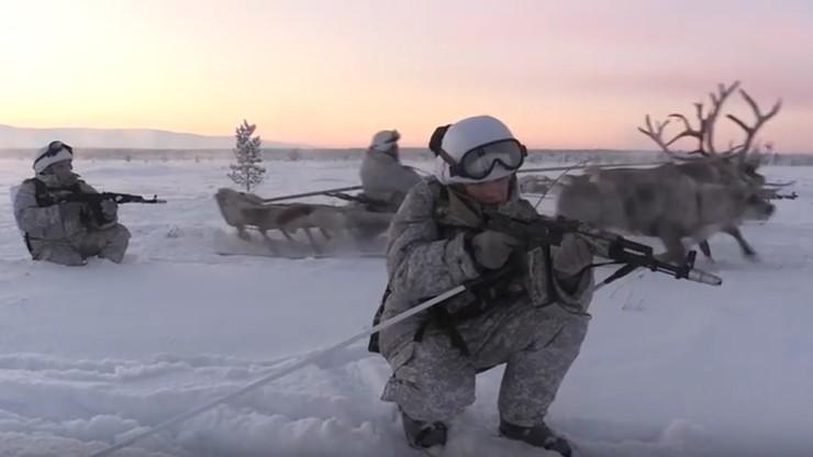 Renifery i psy husky na wyposażeniu rosyjskiej armii. Zobacz ćwiczenia