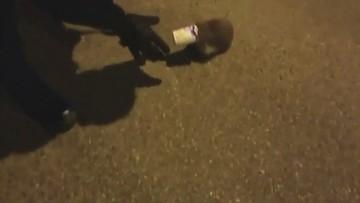 Jeż zaklinował się w plastikowym kubku. Pomogli policjanci