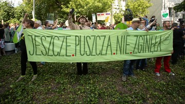 05-07-2017 16:15 Wycinka w Puszczy Białowieskiej musi zostać wstrzymana. Decyzja UNESCO