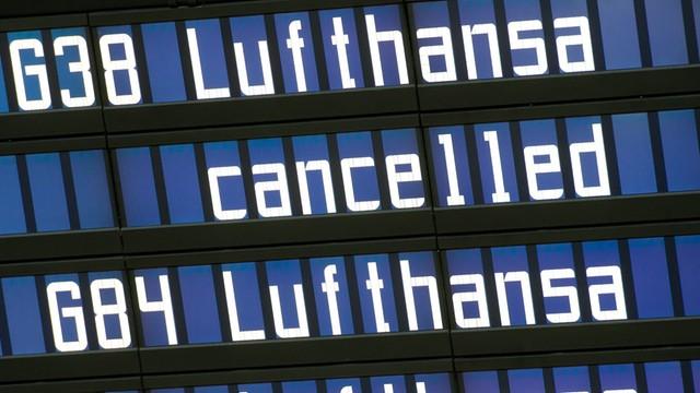 Niemcy: Lufthansa zawiesza loty do Szarm el-Szejk