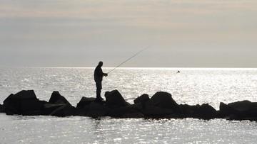 14-06-2017 05:42 W Bałtyku ubyło ryb. Nie ma to związku z powstaniem gazociągu