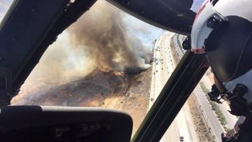 24-07-2016 06:41 Pożary lasów w Kalifornii. Zagrożony rezerwat dzikich zwierząt