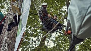 Aktywiści z 12 krajów blokowali wycinkę i wywóz drzew z Puszczy Białowieskiej