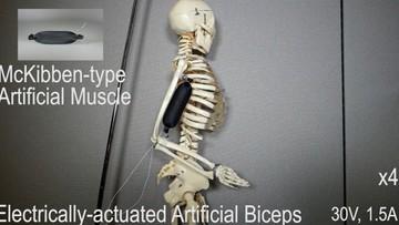 """21-09-2017 11:49 """"Sztuczne mięśnie"""" z drukarki 3D. Rewolucja w robotyce"""