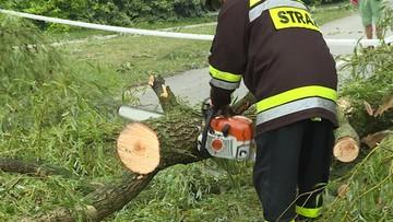 Podtopienia, powalone konary drzew. Blisko tysiąc interwencji strażaków po burzach