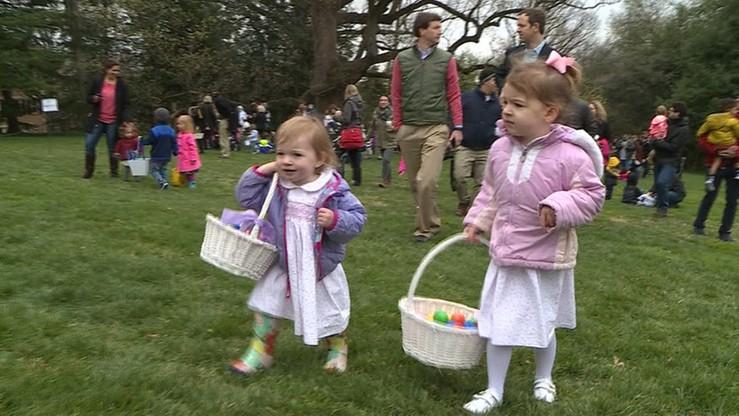 Waszyngton: dzikie polowanie na wielkanocne jaja