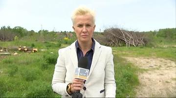 2017-05-22 Gigantyczna kara za nielegalną wycinkę drzew. Właściciel działki musi zapłacić niemal 15 mln zł
