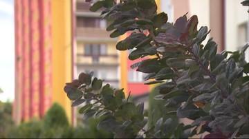 Odór w Bełchatowie. Mieszkańcy pozwali miejską spółkę oczyszczalni ścieków.