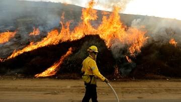 03-09-2017 06:33 Pożary lasów w Kalifornii. Ewakuowano mieszkańców przedmieść Los Angeles