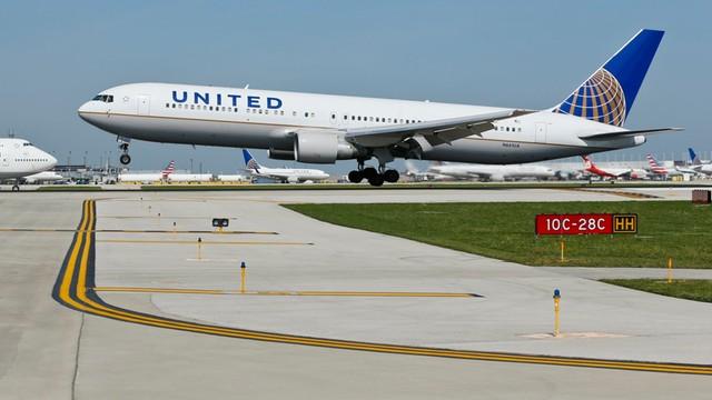 Kolejna wpadka United Airlines - pasażera samolotu zaatakował skorpion