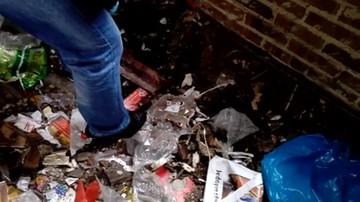2017-04-24 8 kg narkotyków i 2 kg materiałów wybuchowych znalezione w Skarżysku–Kamiennej