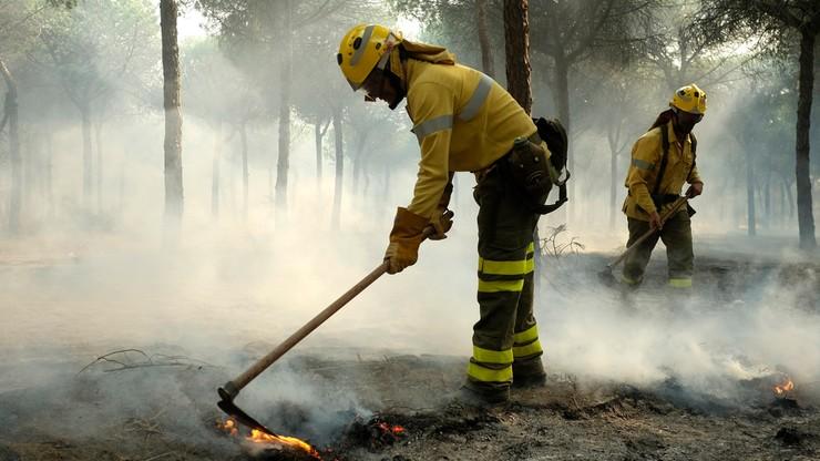MSZ: nikt z Polaków nie ucierpiał w związku z pożarem w Hiszpanii