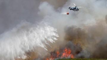14-07-2016 14:24 Pożary na południu Francji; ewakuowano ponad 3 tys. ludzi