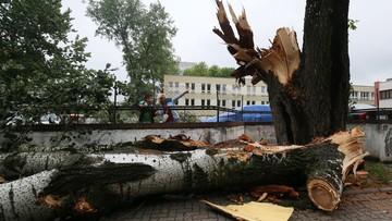 27-06-2016 12:50 Nawałnice nad Polską: ofiary, ranni, tysiące powalonych drzew