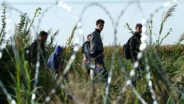 Dwaj Tunezyjczycy wydaleni z Włoch ze względów bezpieczeństwa