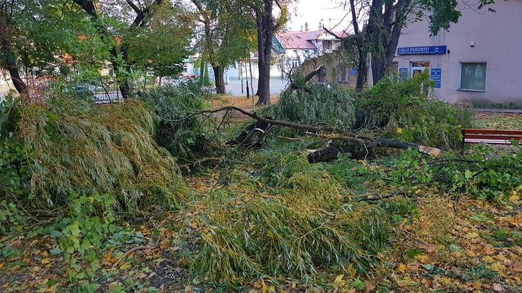 2017-10-06 Powalone drzewa po wichurach na Podkarpaciu. Orkan Ksawery przechodzi nad Polską