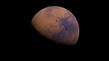 30-09-2017 06:51 Elon Musk planuje prywatną wyprawę na Marsa