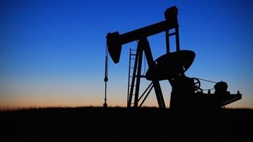 02-09-2016 08:03 Rosną ceny ropy w USA, ale w ostatnich dniach spadły najmocniej od lutego