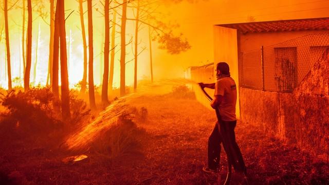 Pożary w Portugalii. Rząd ogłosił żałobę narodową