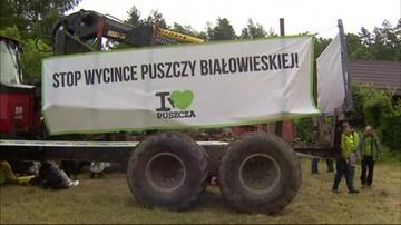 Czwarta blokada w Puszczy Białowieskiej. Ze wsparciem Czechów i Rumunów