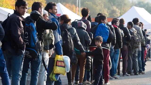 Niemiecka administracja nie radzi sobie z wnioskami o azyl - wieloletnie zaległości