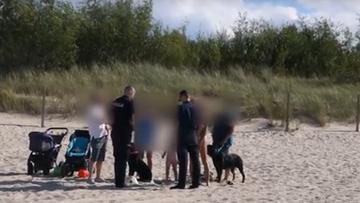 10-08-2017 20:31 Pies pogryzł 8-letnie dziecko na plaży w Świnoujściu. Właścicielka nie chciała przyjąć mandatu