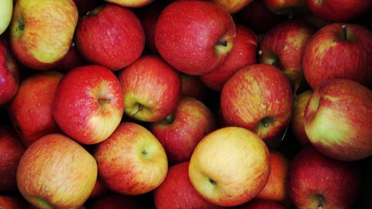 Polska nie jest już światowym liderem w eksporcie jabłek
