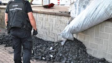 Kierowca ciężarówki przewoził ponad 0,5 mln sztuk papierosów. Były ukryte w pakietach węgla drzewnego